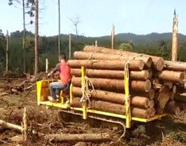 履带爬山机运输木材